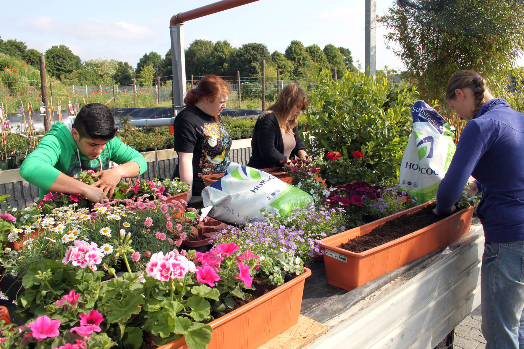 Blumenkästen vorbereiten und fachgerecht bepflanzen