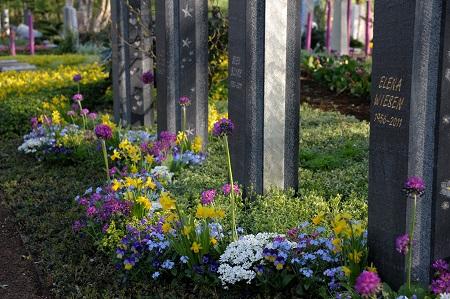 BdF_Frühling auf Friedhöfen.jpg: Die Natur erwacht zu neuem Leben: Auch auf den Gräbern wird es jetz