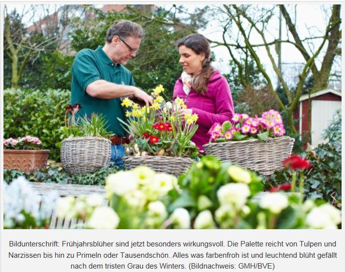 Frühlingsblüher Quelle GMH/BVE